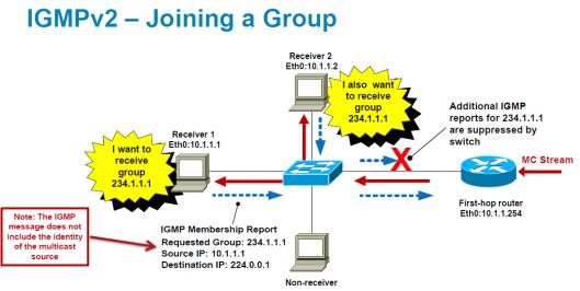 IGMP-2
