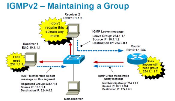 IGMP Basics | mrn-cciew