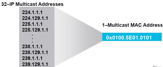 Multicast-Address-7