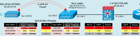 WLLC-SW QoS-1
