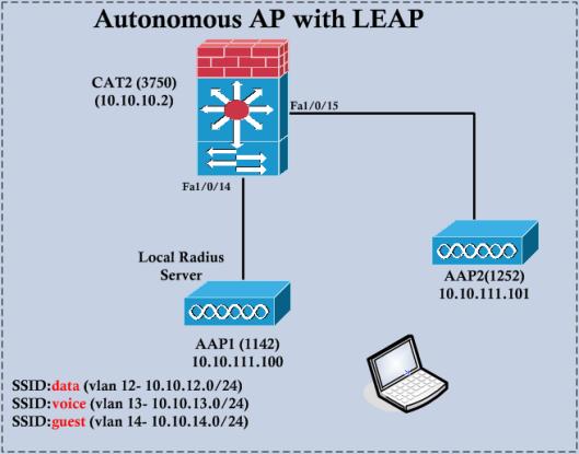 AAP-LEAP-01