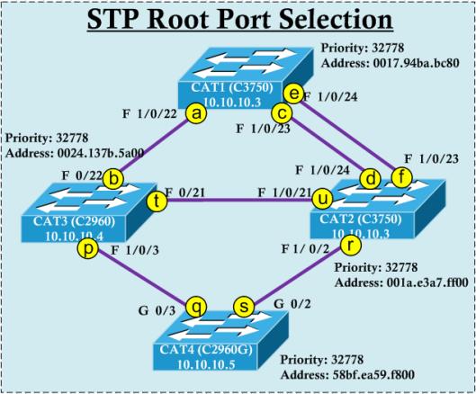 STP-Root-01