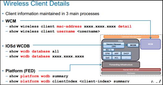 CA-Client Detail-01