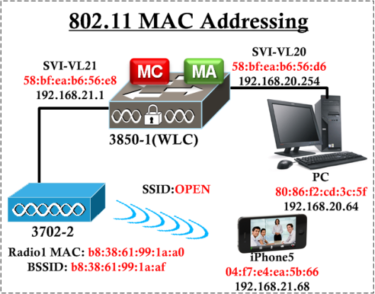 CWAP-MAC -Address-10