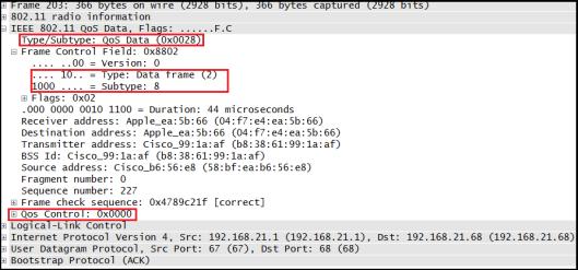 CWAP - Data Frame-02