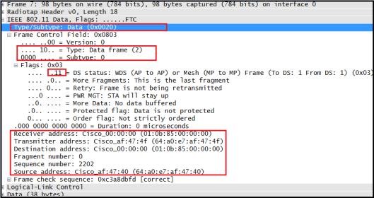 CWAP - Data Frame-10